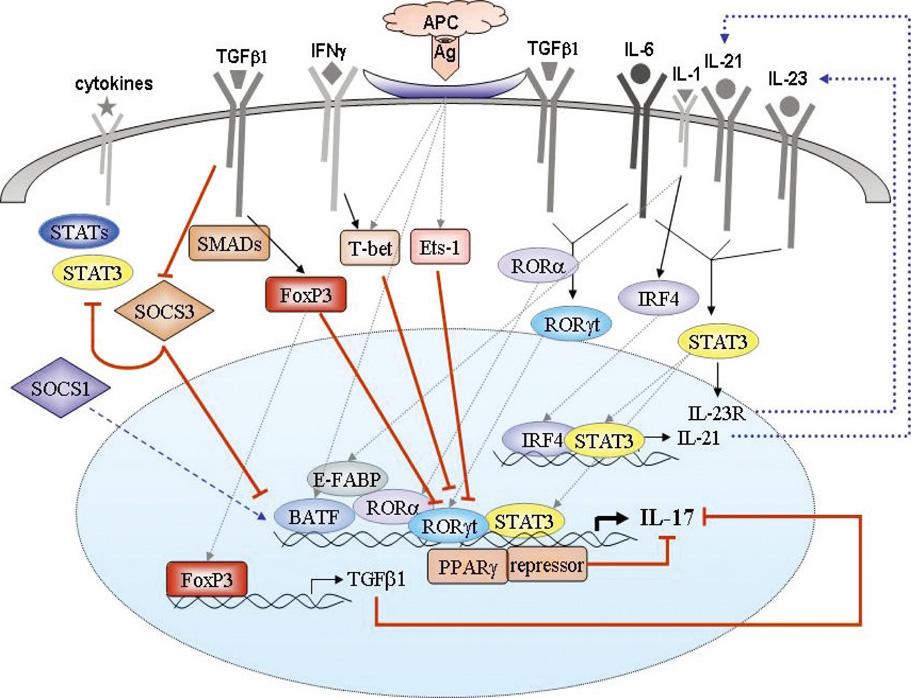 Transcriptional Gene Expression Gene Expression of General